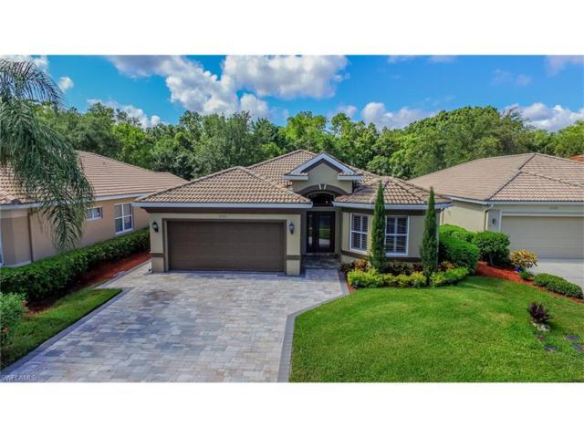 20391 Rookery Dr, ESTERO, FL 33928 (MLS #217044539) :: The New Home Spot, Inc.