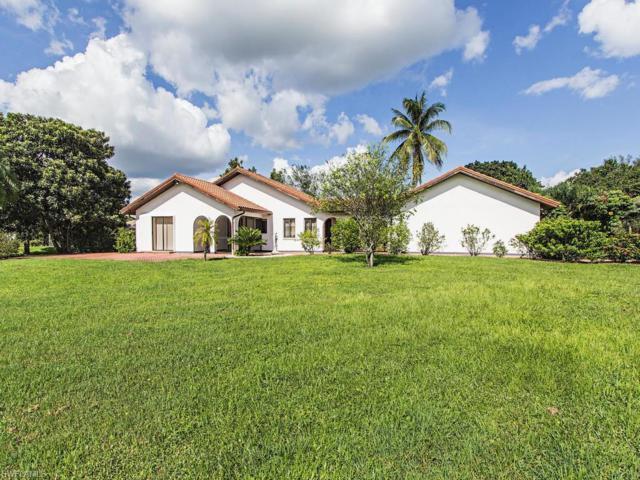 12286 Alamansa Ln, BONITA SPRINGS, FL 34135 (MLS #216053415) :: The New Home Spot, Inc.