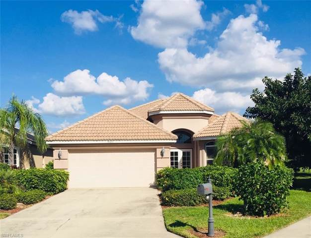 9671 Raven Ct, ESTERO, FL 33928 (#219065687) :: The Dellatorè Real Estate Group