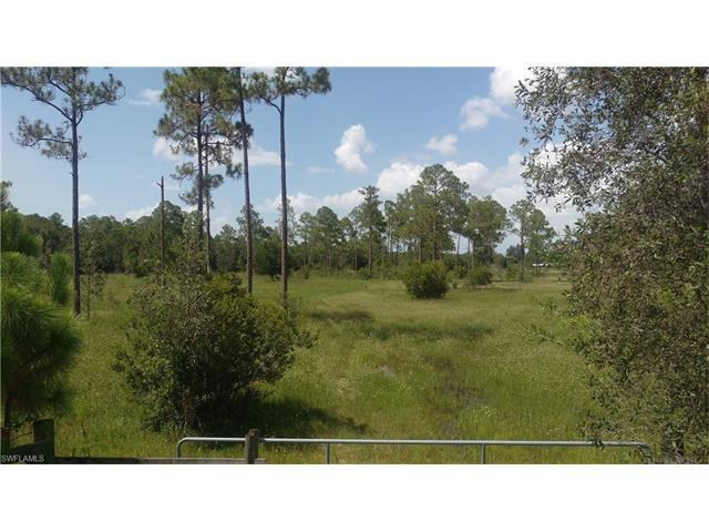 20421 Welborn Rd, NORTH FORT MYERS, FL 33917 (MLS #216060754) :: The New Home Spot, Inc.