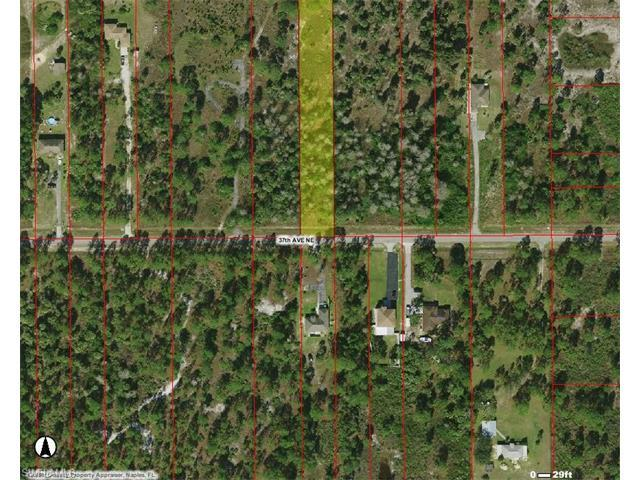 2925 37th Ave NE, NAPLES, FL 34120 (#216063467) :: Homes and Land Brokers, Inc
