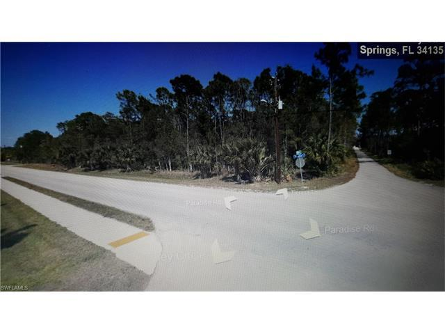 10251 Tigress Ln, BONITA SPRINGS, FL 34135 (MLS #217002141) :: The New Home Spot, Inc.