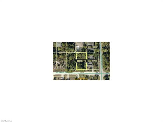4610 Catalina Ln, BONITA SPRINGS, FL 34134 (MLS #217010851) :: The New Home Spot, Inc.