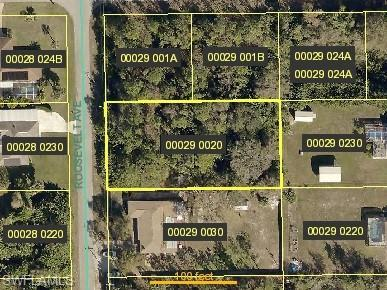 620 Roosevelt Ave, LEHIGH ACRES, FL 33936 (#217031117) :: Southwest Florida R.E. Group LLC