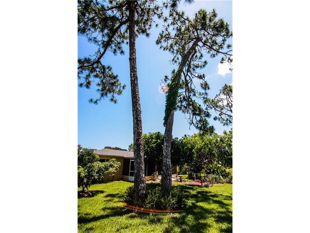 2342 Woodland Blvd, FORT MYERS, FL 33907 (MLS #217039289) :: The New Home Spot, Inc.