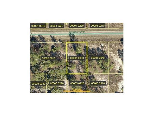 714 Bumby St E, LEHIGH ACRES, FL 33974 (MLS #217039659) :: The New Home Spot, Inc.