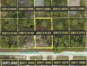 4626 Catalina Ln, BONITA SPRINGS, FL 34134 (MLS #218015395) :: The New Home Spot, Inc.