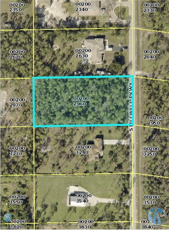 24300 Stillwell Pky, BONITA SPRINGS, FL 34135 (MLS #219017668) :: John R Wood Properties