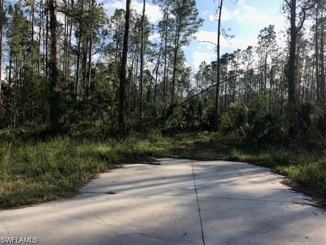 3310 8th Ave SE, NAPLES, FL 34117 (#219038223) :: Jason Schiering, PA