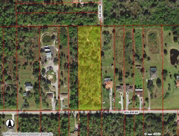 47TH Ave NE, NAPLES, FL 34120 (MLS #219068238) :: Clausen Properties, Inc.