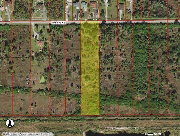 4480 43rd Ave NE, NAPLES, FL 34120 (#219078271) :: The Dellatorè Real Estate Group