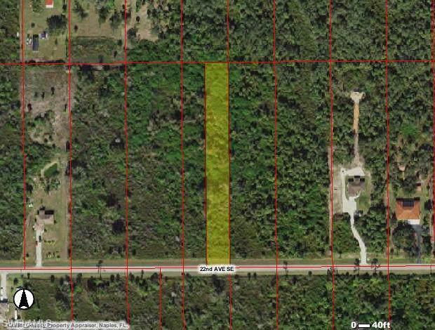 3545 22nd Ave SE, NAPLES, FL 34117 (MLS #220002255) :: Clausen Properties, Inc.