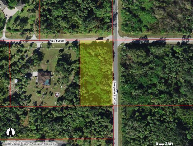 3080 16th Ave SE, NAPLES, FL 34117 (#220008925) :: The Dellatorè Real Estate Group