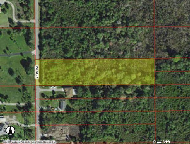 16TH St NE, NAPLES, FL 34120 (#220011225) :: The Dellatorè Real Estate Group