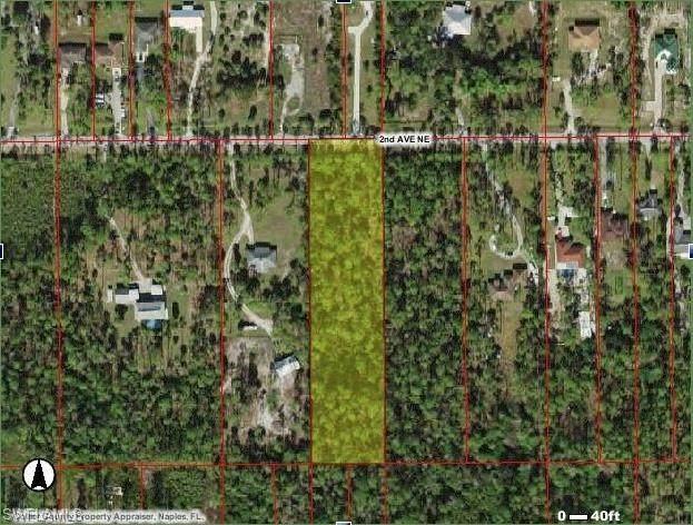 2nd Ave NE, NAPLES, FL 33928 (#220014418) :: The Dellatorè Real Estate Group