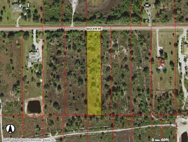 62ND Ave NE, NAPLES, FL 34120 (#220015229) :: The Dellatorè Real Estate Group
