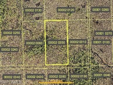 Undetermined, BONITA SPRINGS, FL 34135 (#220039541) :: Caine Premier Properties