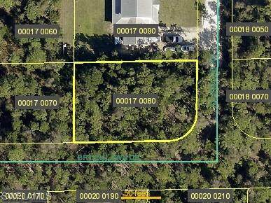 20295 Idlewood Rd, NORTH FORT MYERS, FL 33917 (#220064730) :: The Dellatorè Real Estate Group
