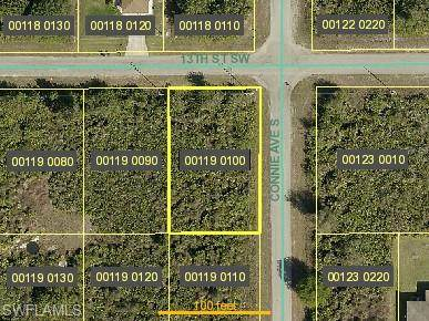 2601 13th St SW, LEHIGH ACRES, FL 33976 (MLS #221013822) :: Domain Realty