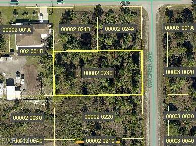 821 Wagner Ave, LEHIGH ACRES, FL 33972 (MLS #221042363) :: The Naples Beach And Homes Team/MVP Realty