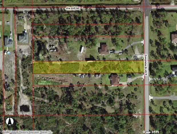 4047 Everglades Blvd N, NAPLES, FL 34120 (MLS #221049456) :: Domain Realty