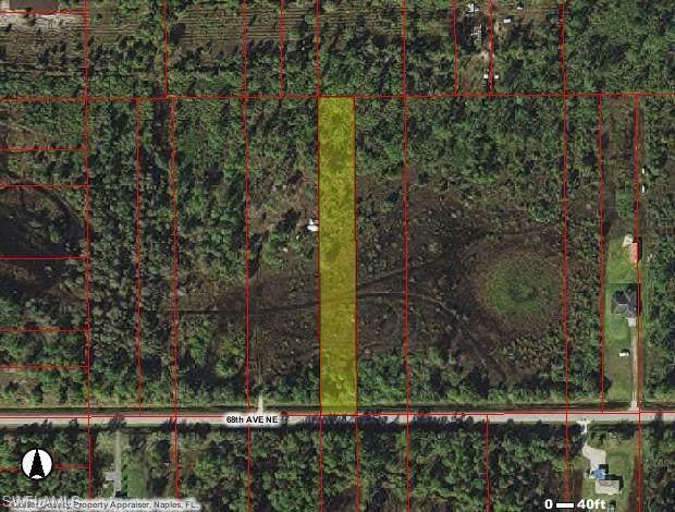 3275 68th Ave NE, NAPLES, FL 34120 (MLS #221051850) :: Domain Realty