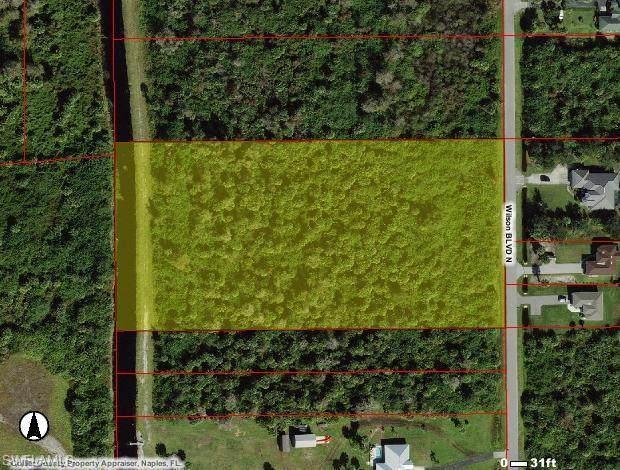 Wilson Blvd, NAPLES, FL 34120 (MLS #221056620) :: Crimaldi and Associates, LLC