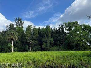 7146 Coccoloba Way, BOKEELIA, FL 33922 (MLS #221072485) :: Florida Homestar Team