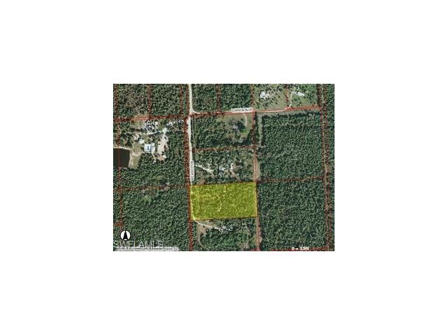 1960 Moulder Dr, NAPLES, FL 34120 (MLS #211000040) :: The New Home Spot, Inc.