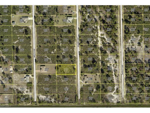407 Irving Ave, LEHIGH ACRES, FL 33972 (MLS #215003047) :: The New Home Spot, Inc.