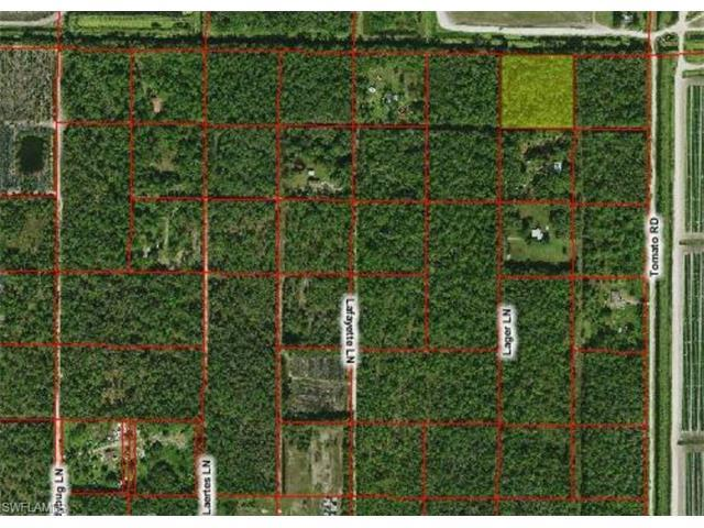 10970 Lager Rd, NAPLES, FL 34114 (#216028395) :: Homes and Land Brokers, Inc