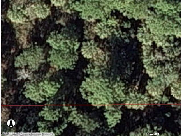 547 Sacramento St, NORTH FORT MYERS, FL 33903 (MLS #213012771) :: Clausen Properties, Inc.