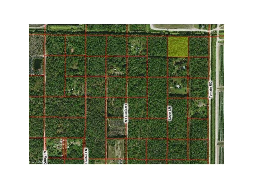 10970 Lager Rd, NAPLES, FL 34114 (MLS #216028395) :: The New Home Spot, Inc.