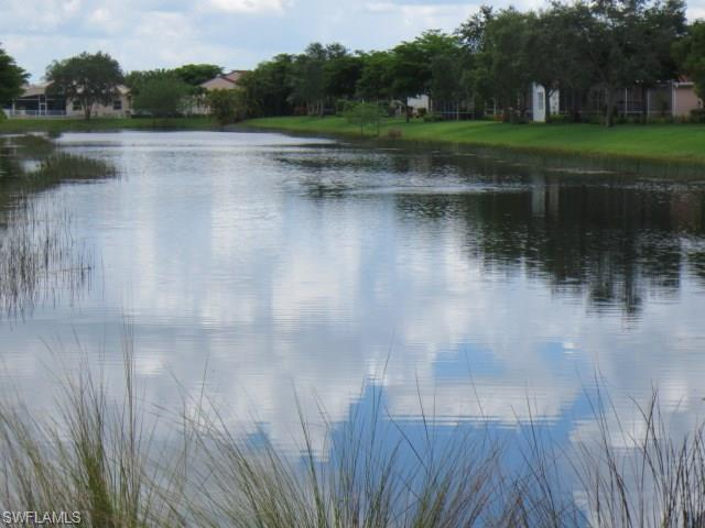 9049 Springview Loop, ESTERO, FL 33928 (MLS #217010480) :: The New Home Spot, Inc.