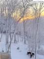 57 Silver Fox Trail - Photo 44