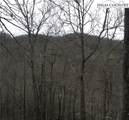 1181 Big Plumtree Creek Road - Photo 24