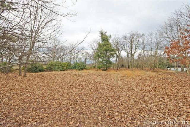 Lot 29 State View Road, Boone, NC 28607 (MLS #200299) :: Keller Williams Realty - Exurbia Real Estate Group