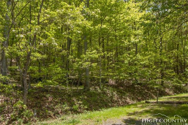 35-36 Mountain Dawn Drive, West Jefferson, NC 28694 (MLS #200912) :: Keller Williams Realty - Exurbia Real Estate Group