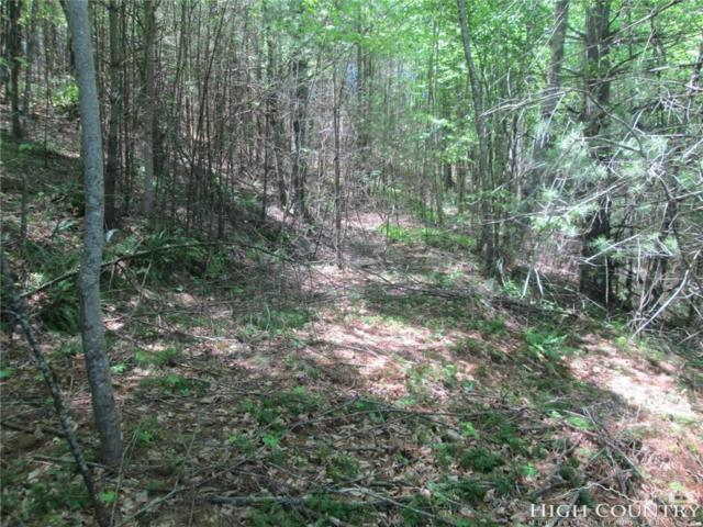 Lot 31 Shawnee Trail, Jefferson, NC 28640 (MLS #200924) :: Keller Williams Realty - Exurbia Real Estate Group