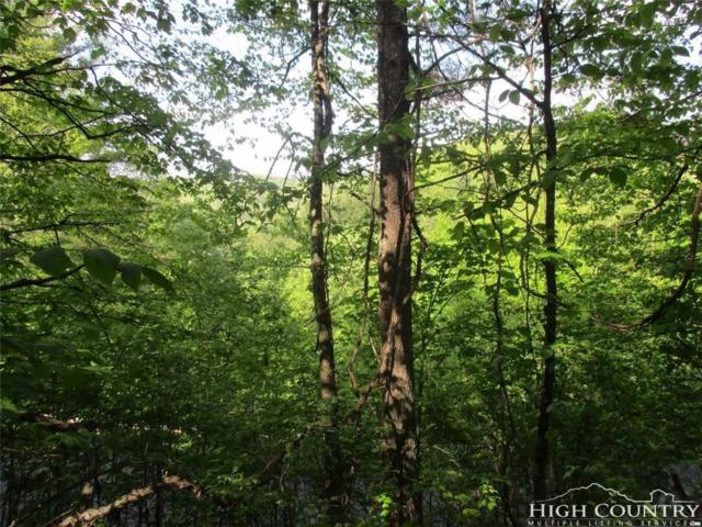 TBD Shawnee Trail Trail, Jefferson, NC 28640 (MLS #200974) :: Keller Williams Realty - Exurbia Real Estate Group