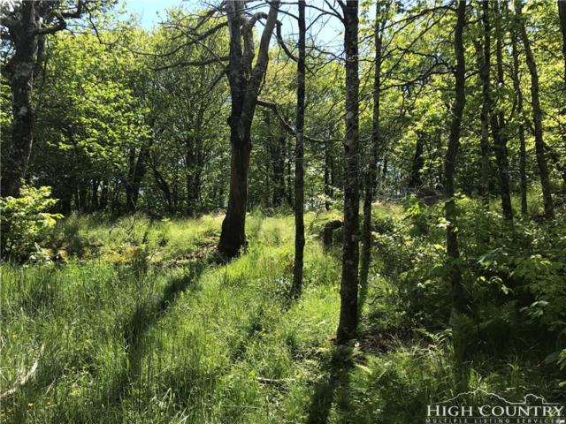 Lot 6 Pinnacle Ridge Road, Beech Mountain, NC 28604 (MLS #201305) :: Keller Williams Realty - Exurbia Real Estate Group