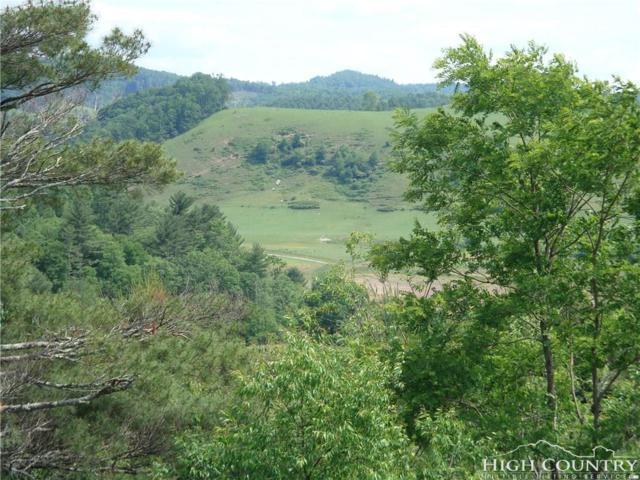 Lots 35 & 36 Green Meadows Drive, Todd, NC 28684 (MLS #201521) :: Keller Williams Realty - Exurbia Real Estate Group