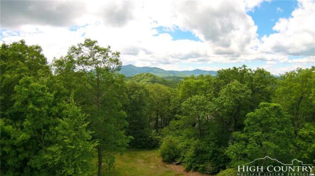 Tbd Spruce Pine Trail, Blowing Rock, NC 28605 (MLS #201548) :: Keller Williams Realty - Exurbia Real Estate Group