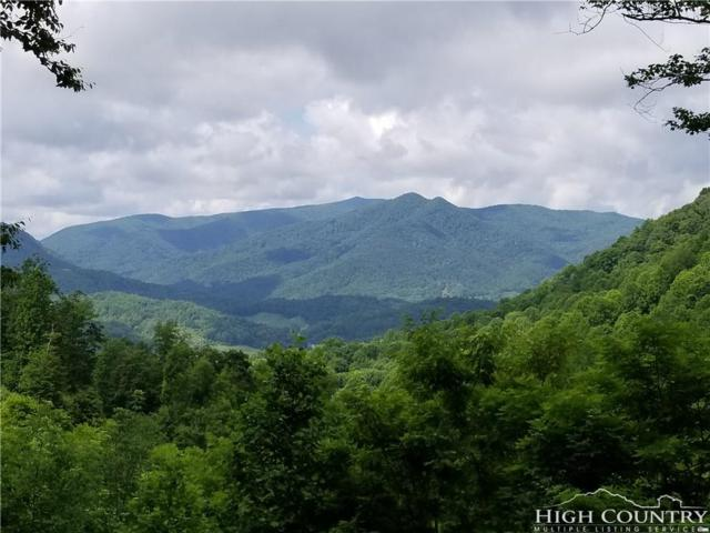 Lot 3 Chardonnay Court, Newland, NC 28657 (MLS #201800) :: Keller Williams Realty - Exurbia Real Estate Group