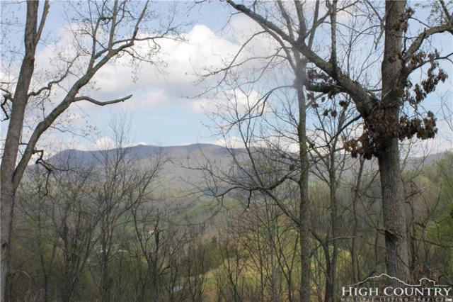 TBD Twin Hollows Ln, Vilas, NC 28692 (MLS #202035) :: RE/MAX Impact Realty
