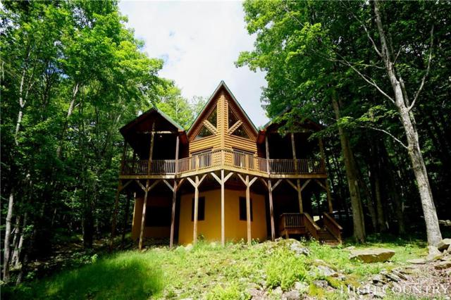 124 Aster Trail, Beech Mountain, NC 28604 (MLS #202098) :: Keller Williams Realty - Exurbia Real Estate Group