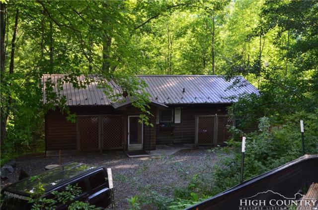 1358 Big Plumtree Creek Road, Newland, NC 28657 (MLS #202180) :: Keller Williams Realty - Exurbia Real Estate Group