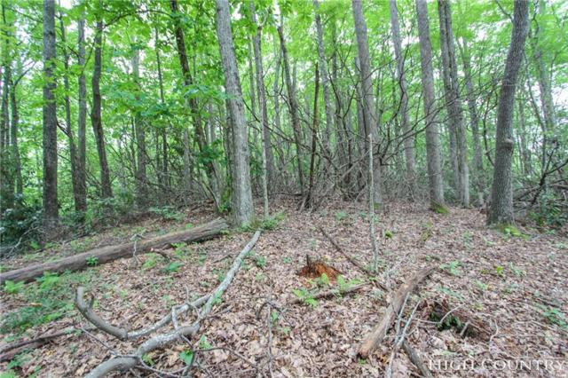 Lot 214 Ontario Ridge, Boone, NC 28607 (MLS #202285) :: Keller Williams Realty - Exurbia Real Estate Group
