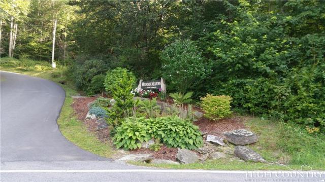 Lot 22 Meadow Avenue, Banner Elk, NC 28604 (MLS #202518) :: Keller Williams Realty - Exurbia Real Estate Group