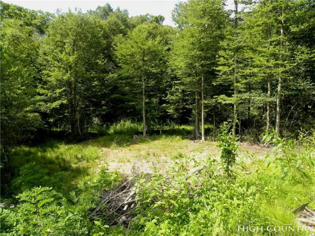 TBD Wonderland Woods Drive Lot 28, Blowing Rock, NC 28605 (MLS #202571) :: Keller Williams Realty - Exurbia Real Estate Group